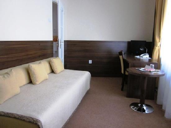 Hotel Arcus: 一人で使う分には広い部屋