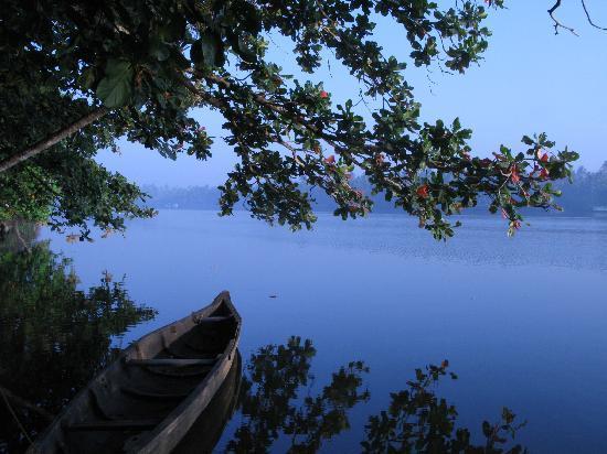 Chendamangalam照片