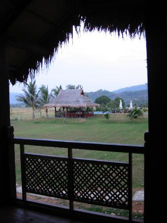 Sunset Valley Holiday Houses: View to pool from Paddy House