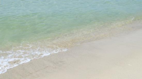 Gulf Shores, August 4, 2011