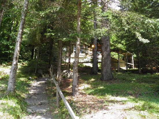 Sainte-Lucie-des-Laurentides, Kanada: Photo du sentier pour se rendre au chalet 34