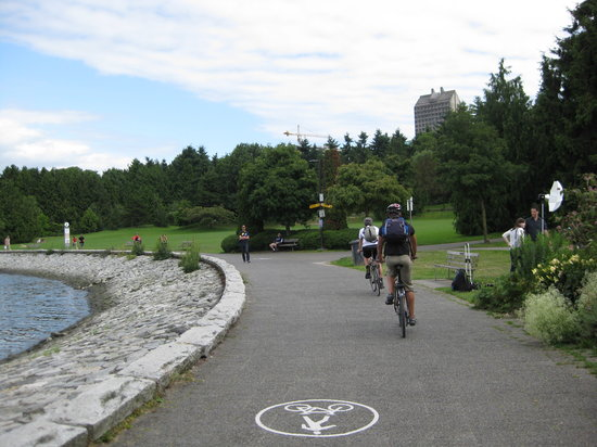 Cycle City Tours and Bike Rentals: Cycle path around the sea wall