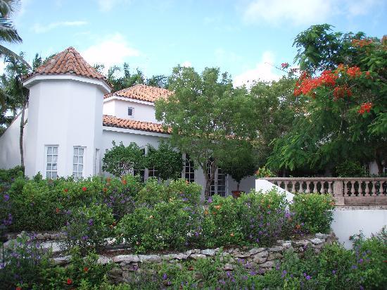 Parrot Cay: Reception e Ristorante sulla terrazza