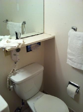 Rodeway Inn: sanitaire