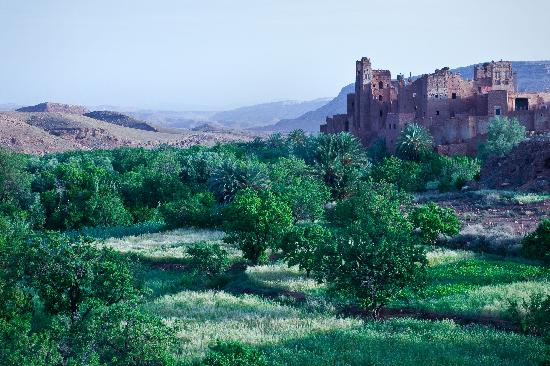 Authentic Morocco: Kasbah at Tamdaght