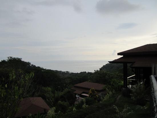 TikiVillas Rainforest Lodge : TikkiVillas Perched on Hill