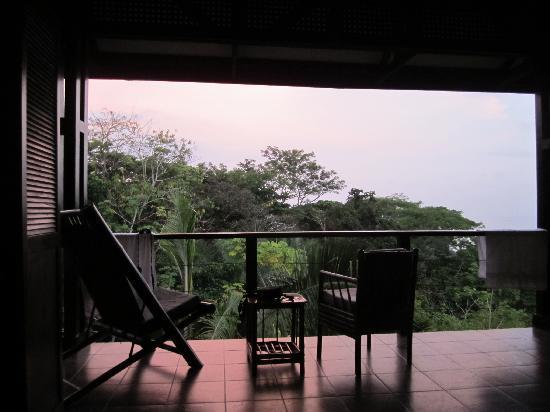 TikiVillas Rainforest Lodge : Screen Wall Facing Forrest