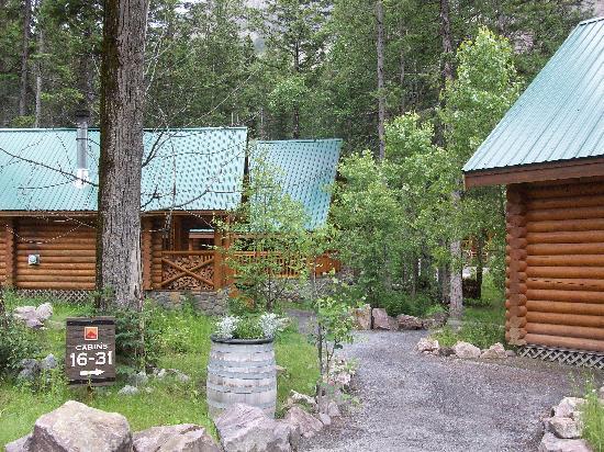 Cathedral Mountain Lodge: Weg zu einigen Cabins