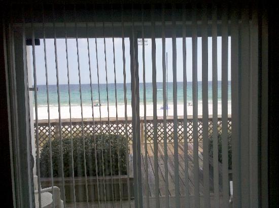 Sea Oats Motel: The view from our room