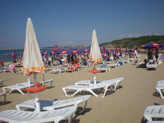 Hotel Club Baia dei Gigli: La spiaggia...