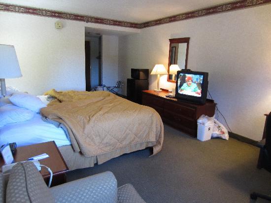 Comfort Inn Trevose: Room