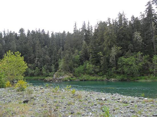 Jedediah Smith Redwoods State Park : view of Smith River from site