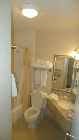 Holiday Inn Grand Haven - Spring Lake: Bathoorm