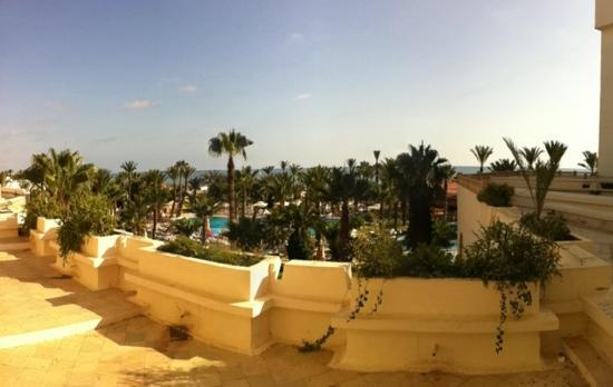Riadh Palms Hotel: ausicht pool strand