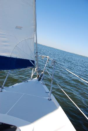 At the Helm Sailing Charters: Smooth Sailing