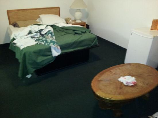 Dolphin Cove Motel: This is an overall picture of the whole room.