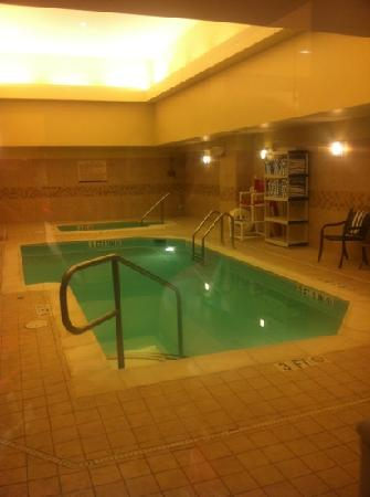 Hilton Garden Inn Washington DC / Bethesda: 3ft pool