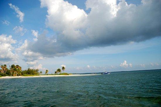 Six Senses Cayman Adventures : Starfish Point