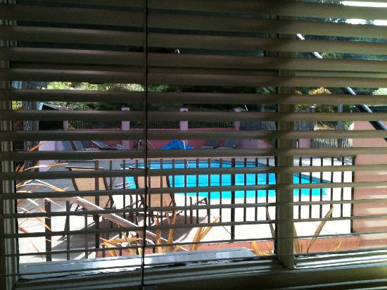 Applewood Inn: view of pool deck from bedroom