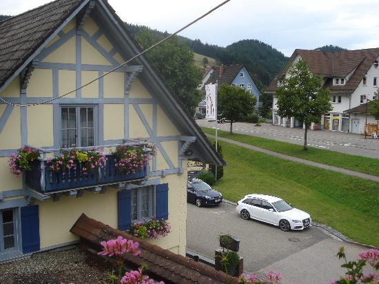 Hotel Waldblick: view from balcony