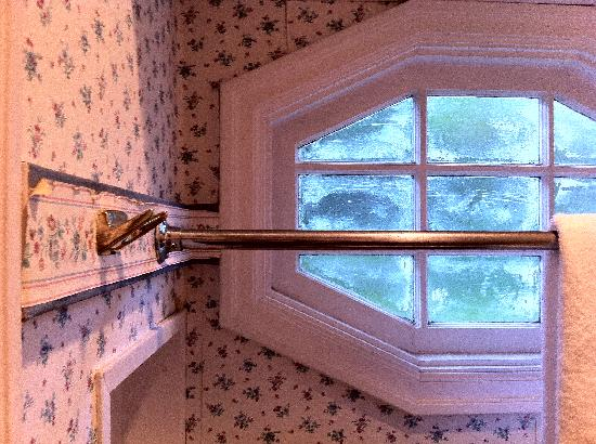 Britannia at Terwilliger Vista: Peeling wallpaper and scummy bath window