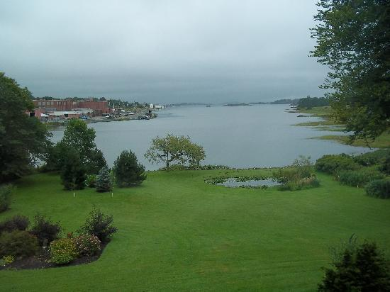 Harbour's Edge Bed & Breakfast: The back lawn and view