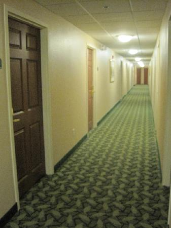 TownePlace Suites Columbus Airport Gahanna: Hall