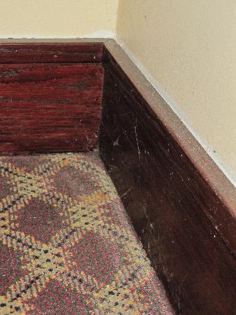 GrandStay Hotel & Suites Chaska: Cobwebs and dust in public hallway