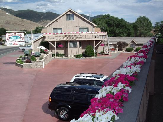 Woodland Motel: We are known for all our flowers