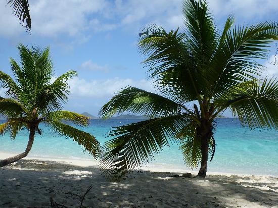 Salomon Beach: Salomon Bay Beach
