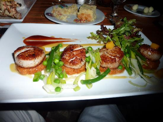 The equator: Scallop dinner