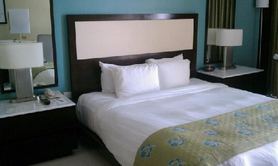 The Condado Plaza Hilton: standard room