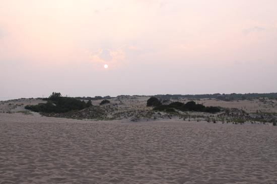 Sandbar Bed & Breakfast: The view from the dunes