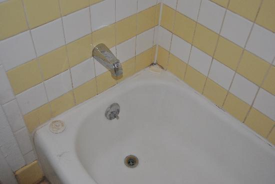 Friendship Inn: Nasty Tub