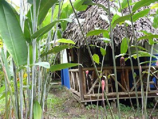 La Quinta de Sarapiqui Country Inn: les bungalows pour 3