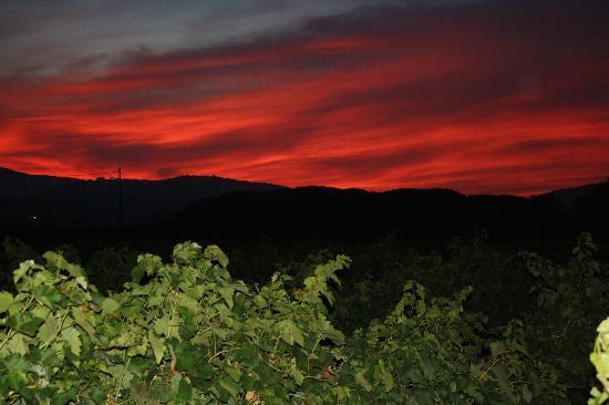 Ramatuelle, Frankrijk: Coucher de soleil vu de la terrasse