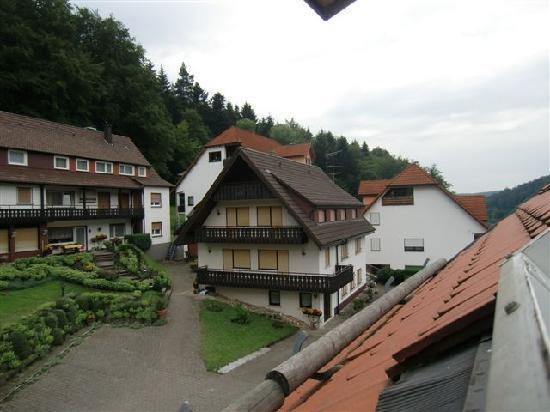 Waldschlösschen: view from room 24