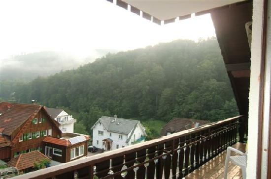 Waldschlösschen: view from balcony