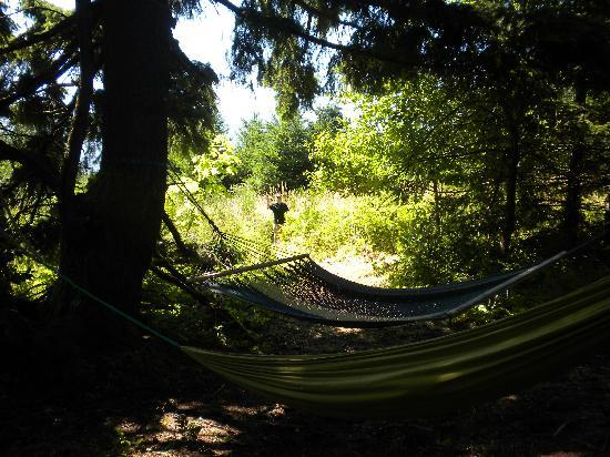 Carson Ridge Luxury Cabins : Hammock Heaven