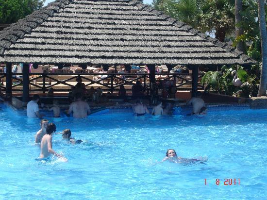 Protur Safari Park Aparthotel : Swim up bar in Water park