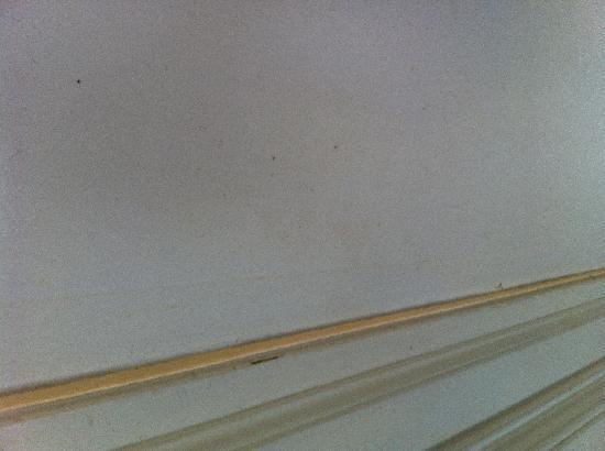 โรงแรมเดอะคลิฟตัน สการ์โบรซ์: Inside bathroom door