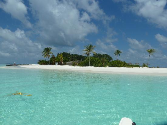 Maafushivaru: L'île de Lonubo