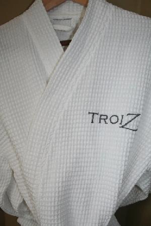 Hotel Troiz : Our cool country vacation!!