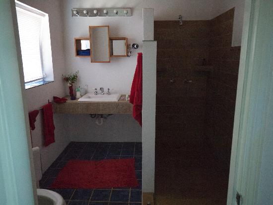 Shannas Cove Resort : Bathroom