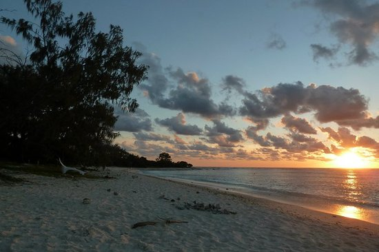 Sunset at Lady Elliot Island