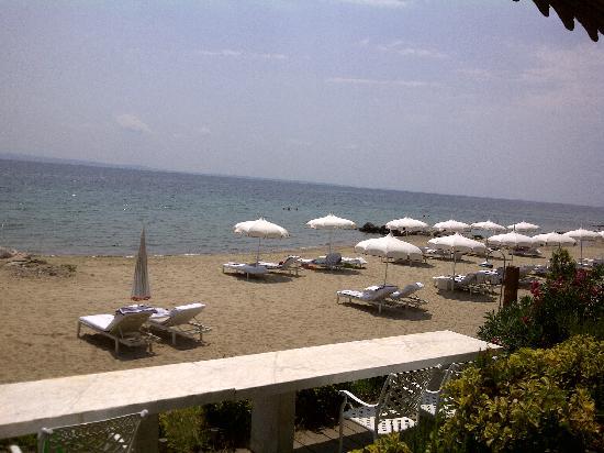 Danai Beach Resort: View from Breakfast