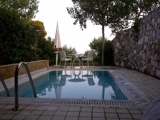 Danai Beach Resort: View from the room