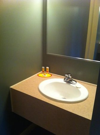 Econo Lodge: sink separate from shower