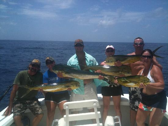 Sea Horse Private Charters: Here are just a few small ones!!! ;)