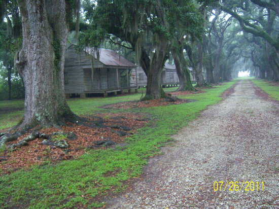 Old River Road Plantation Adventure